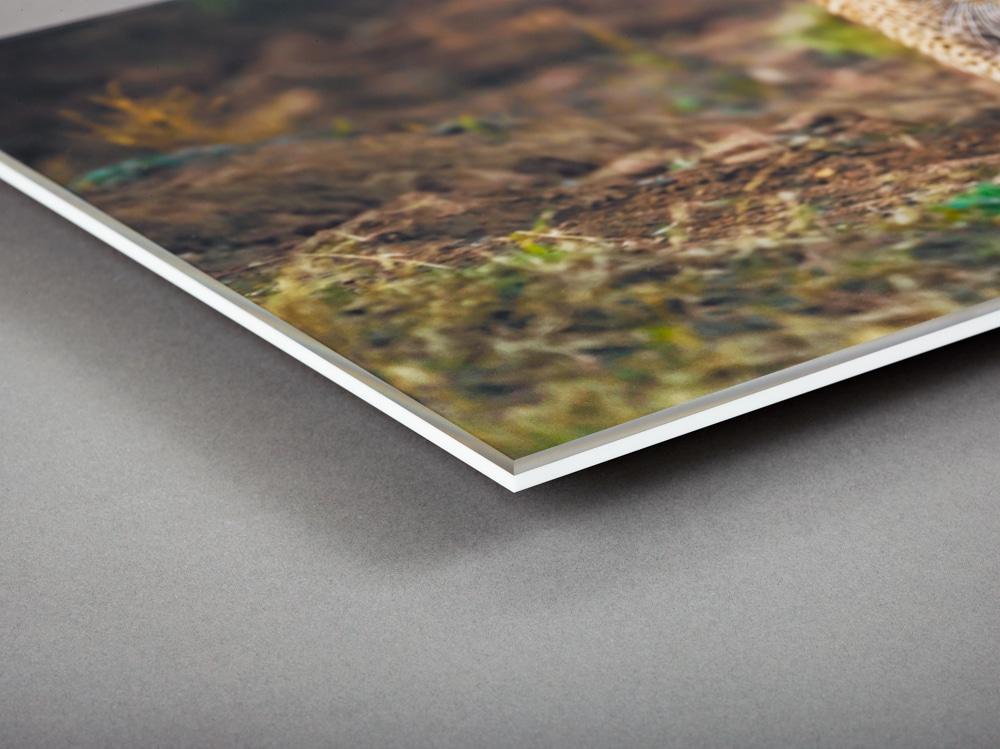 Acrylic Reverse